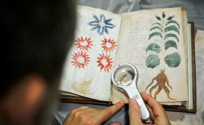 Фото - Учёным удалось расшифровать начало загадочного манускрипта Войнича