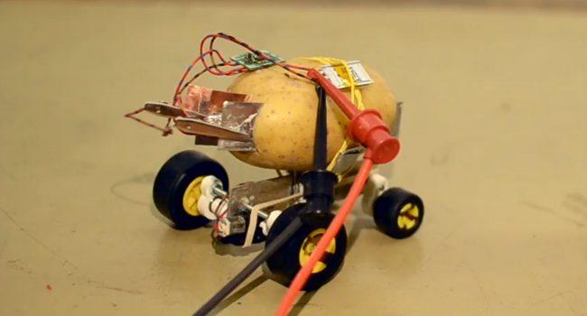 Фото - #видео | Житель Польши построил самоуправляемого робота из картофелины